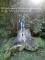 Random image: OLYMPUS DIGITAL CAMERA